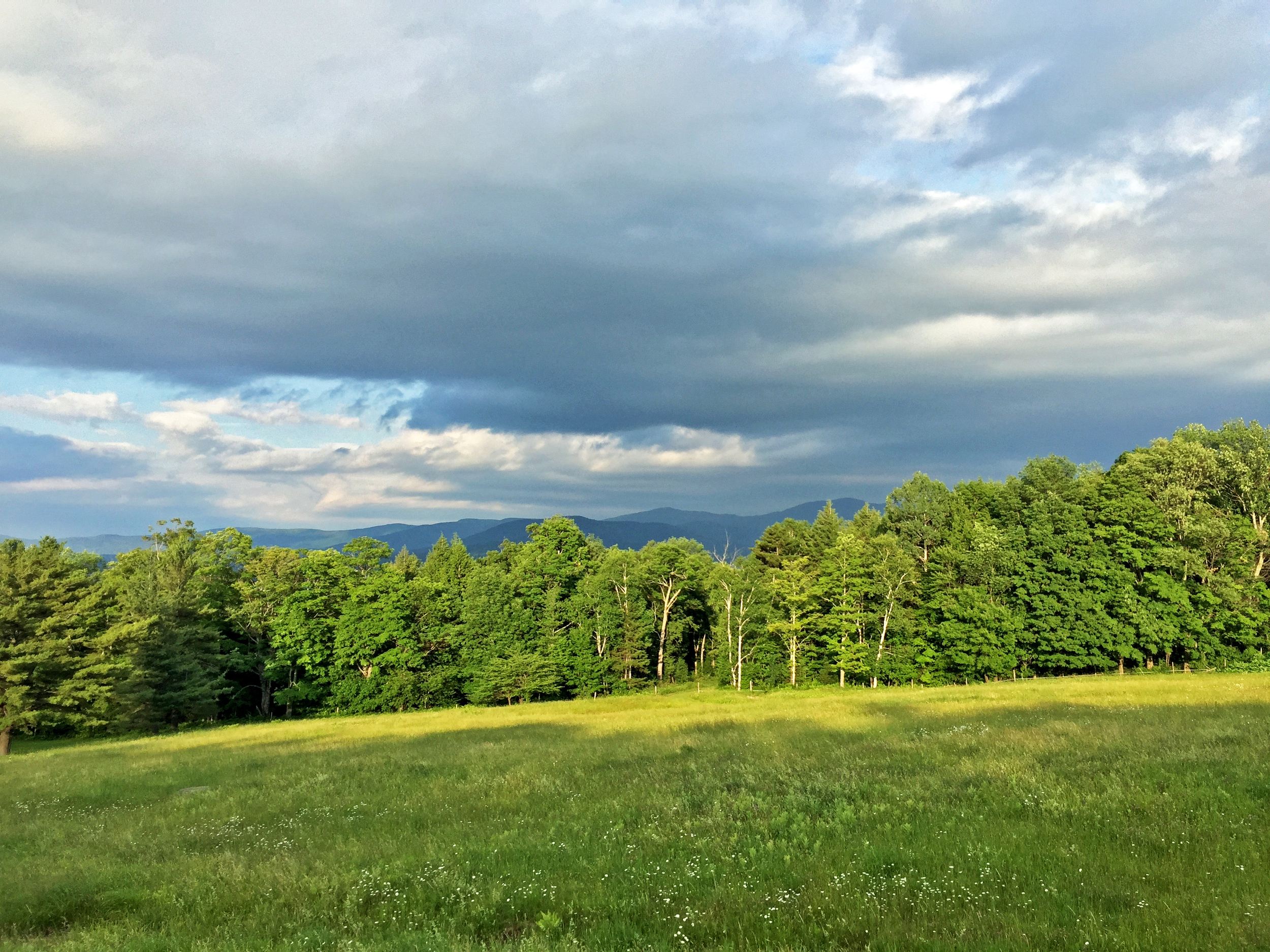 The view to the east from Trapp Hill Road at Trapp Family Lodge