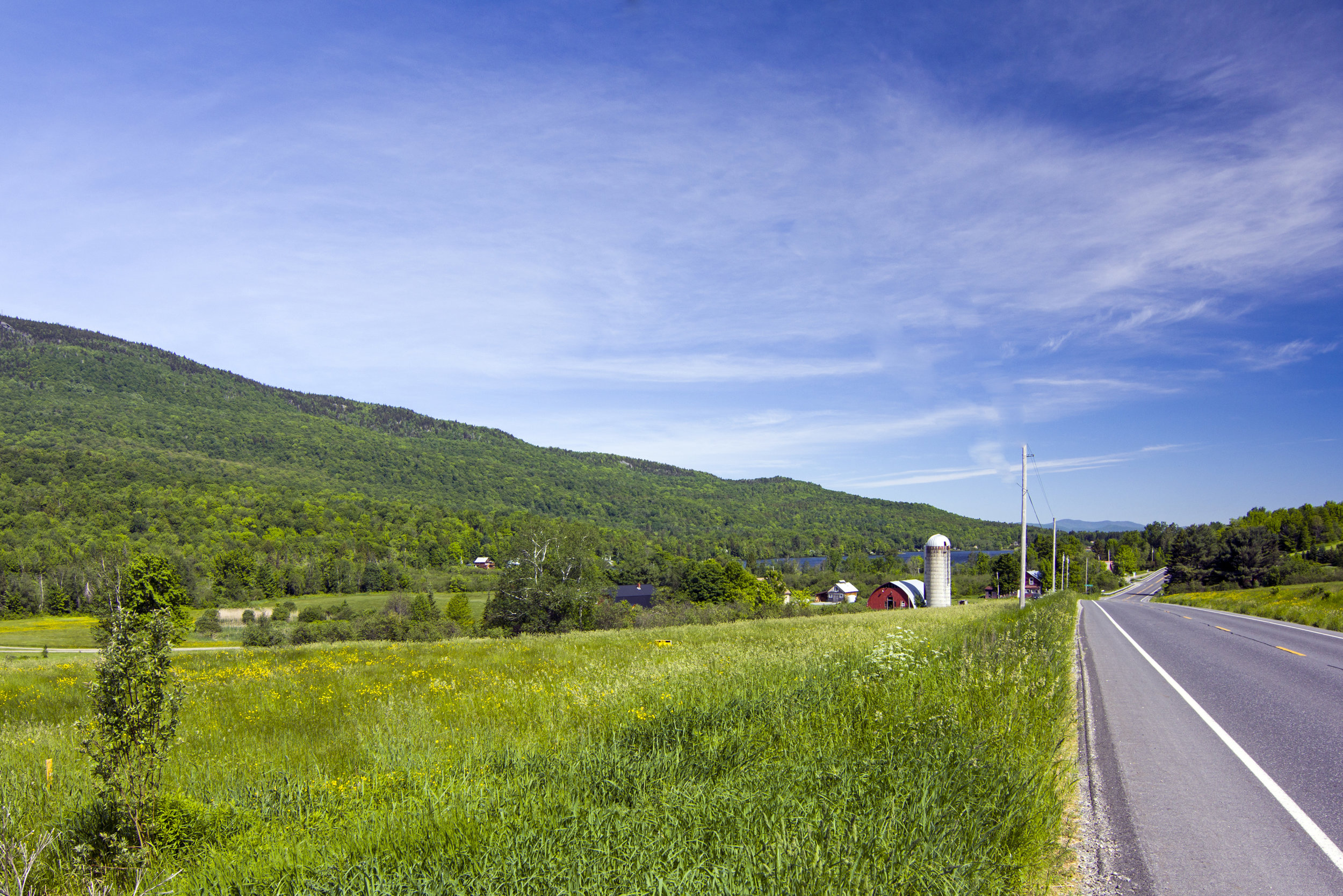21-2017-06-14 IMG_3740 Dumont From the beginning of the driveway.jpg