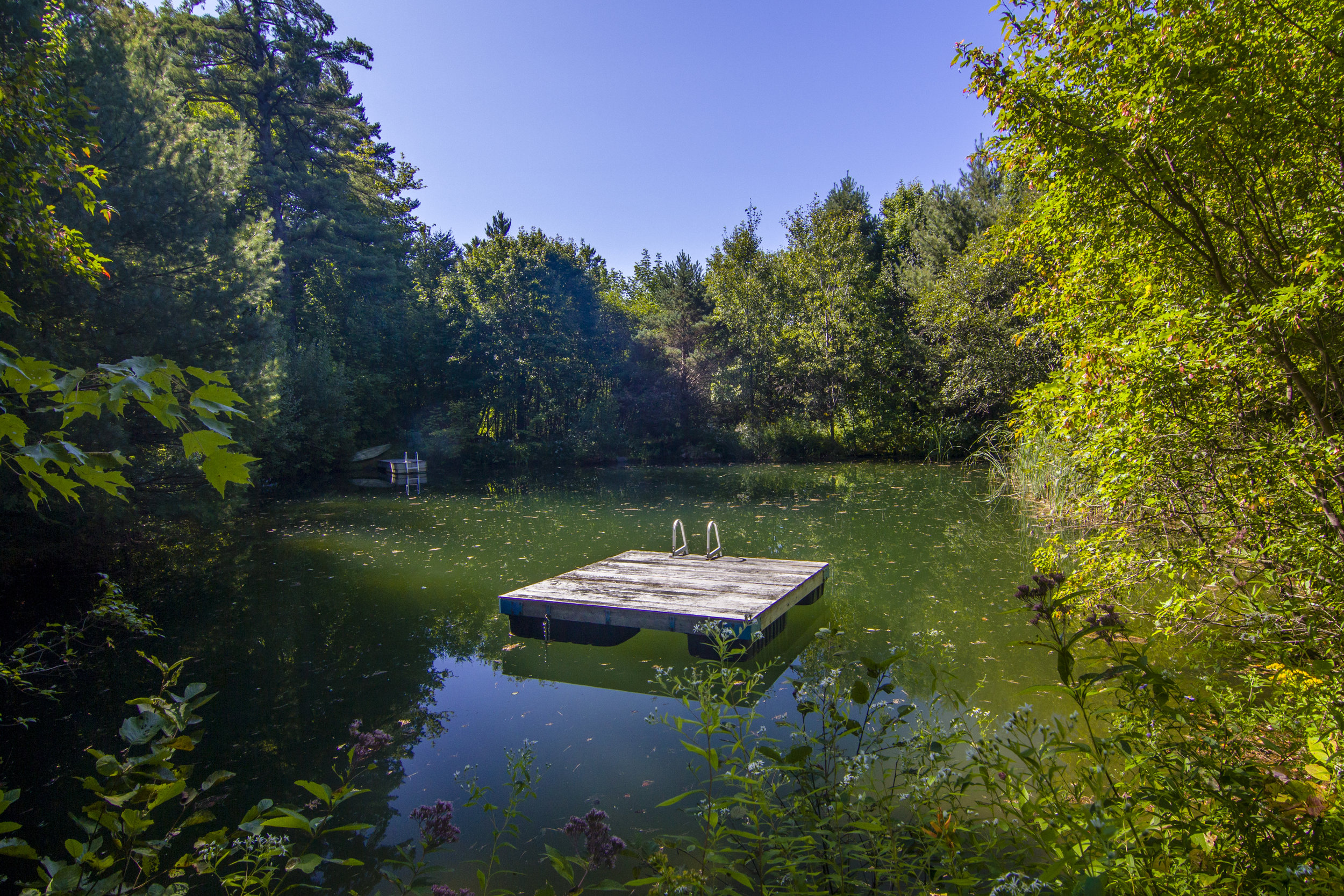 06-Here's your swimming pond with a dock and float!