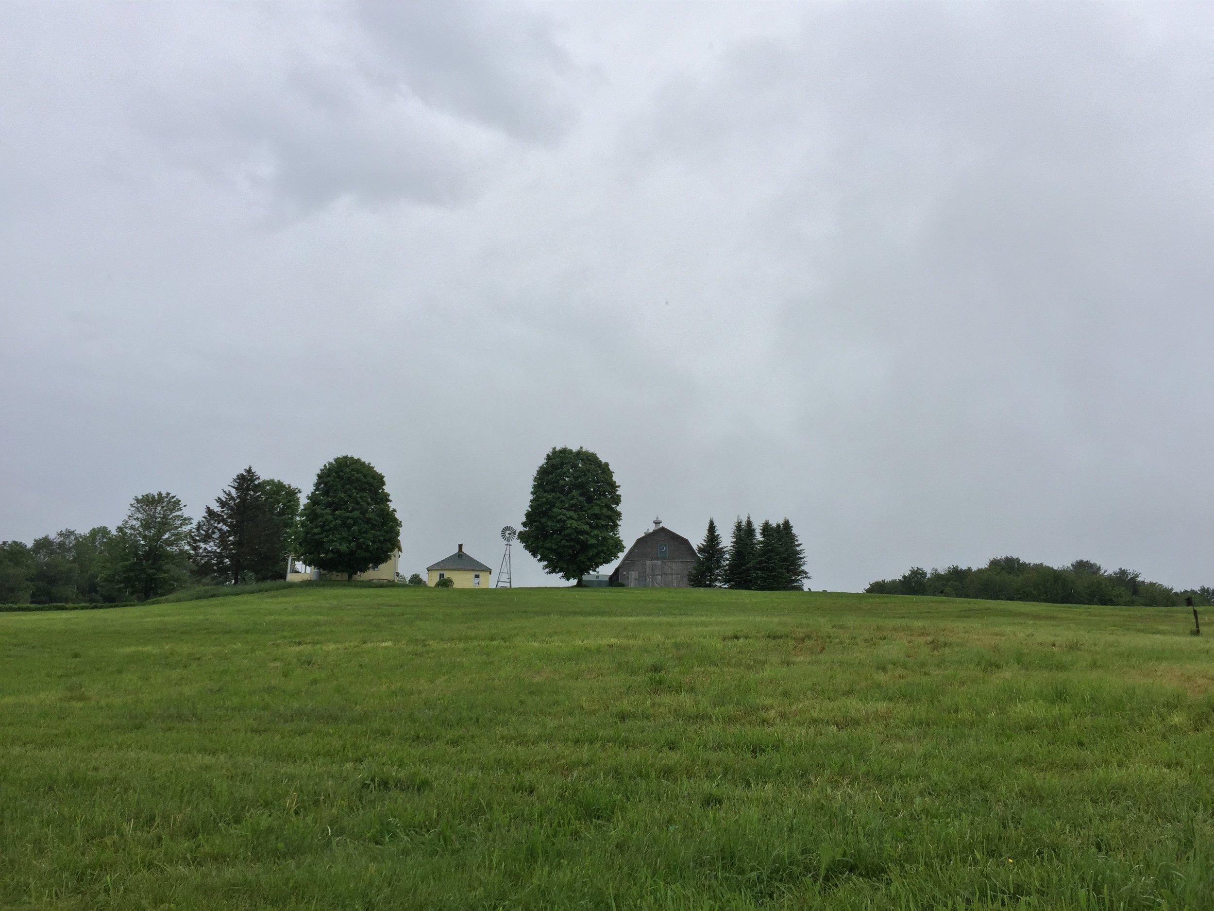 14-Webster Farm, Hyde Park