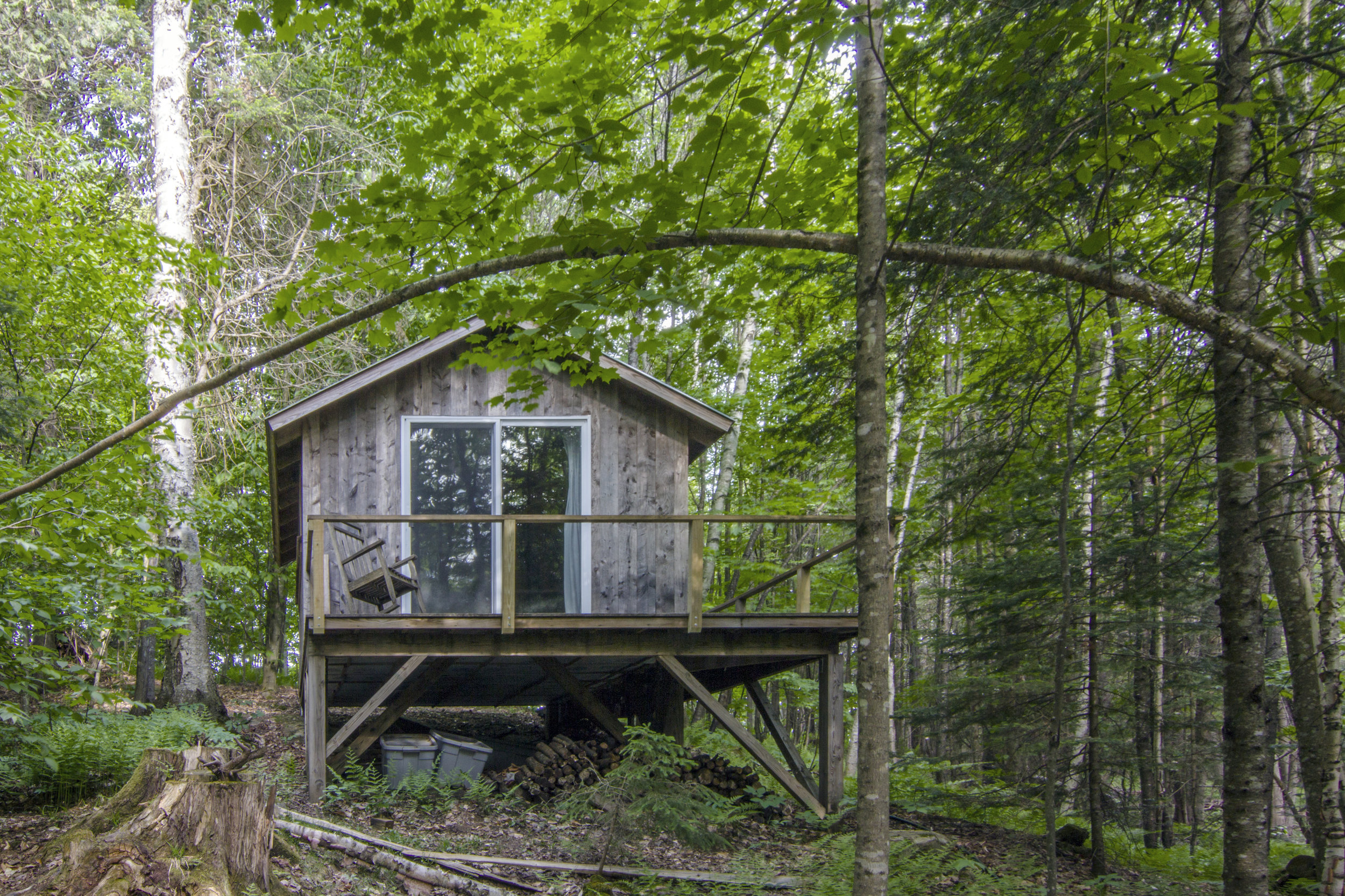 Custom-built cabin in the woods, with a deck