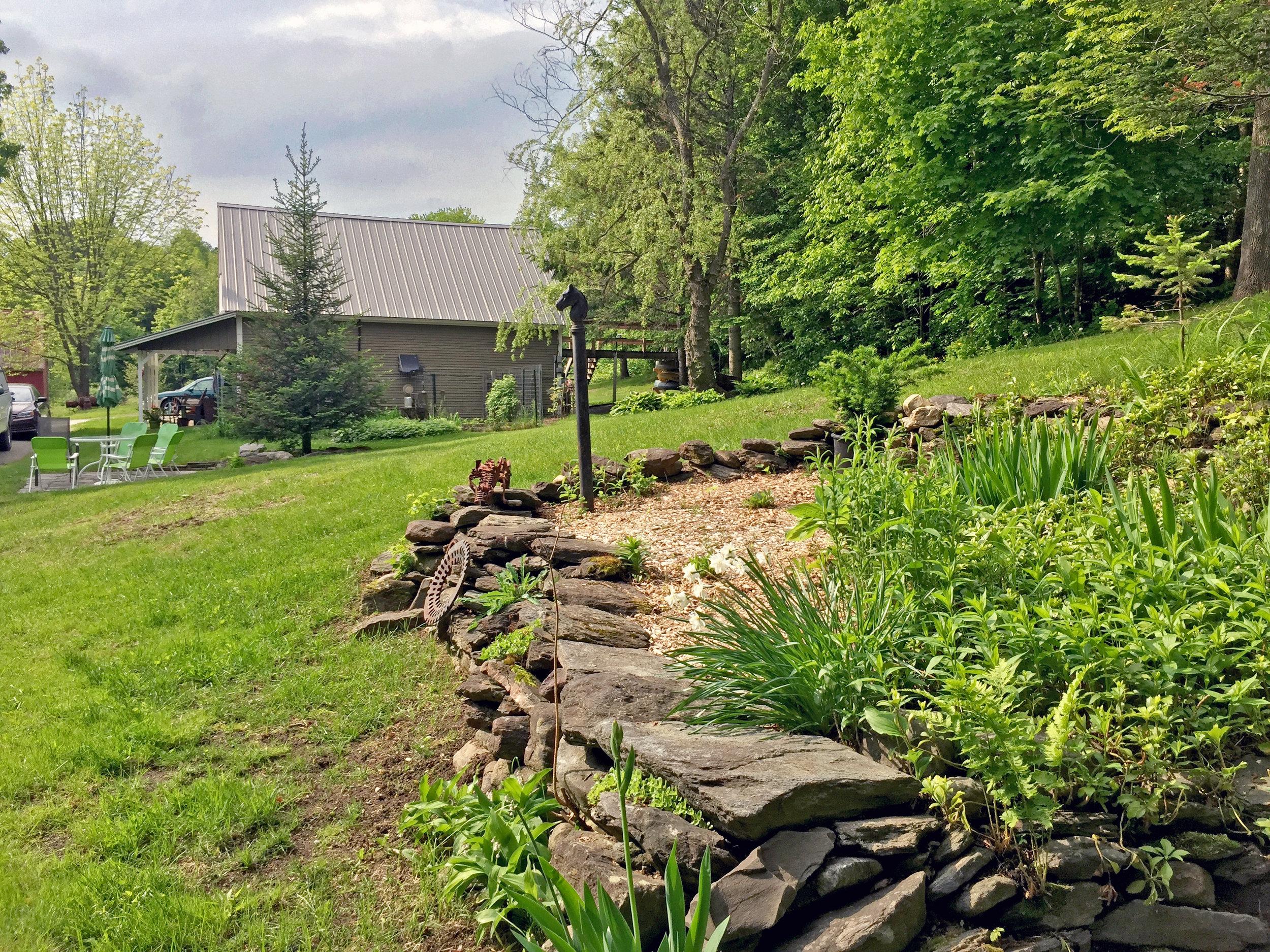 33-2019-06-05 IMG_6603 McGlynchey Garden.jpg