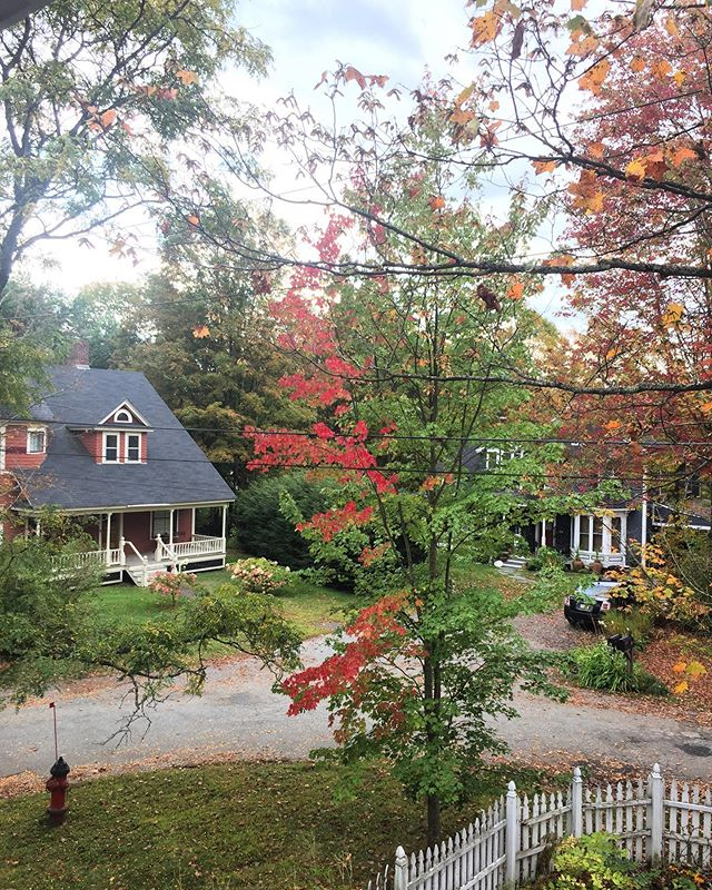 2019-10-01 Fall has sprung in #HydeParkVillageVT