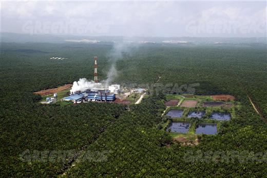 A palm oil factory in the Riau province, Indonesia, Courtesy: Greenpeace International