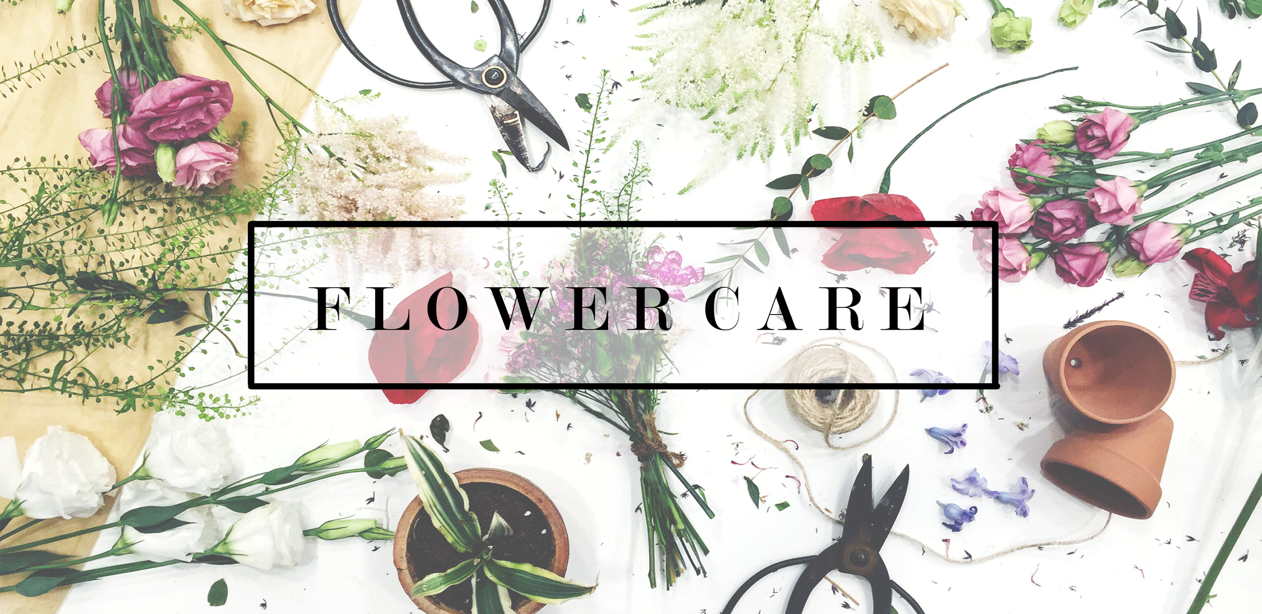 flower-care-page-2.jpg