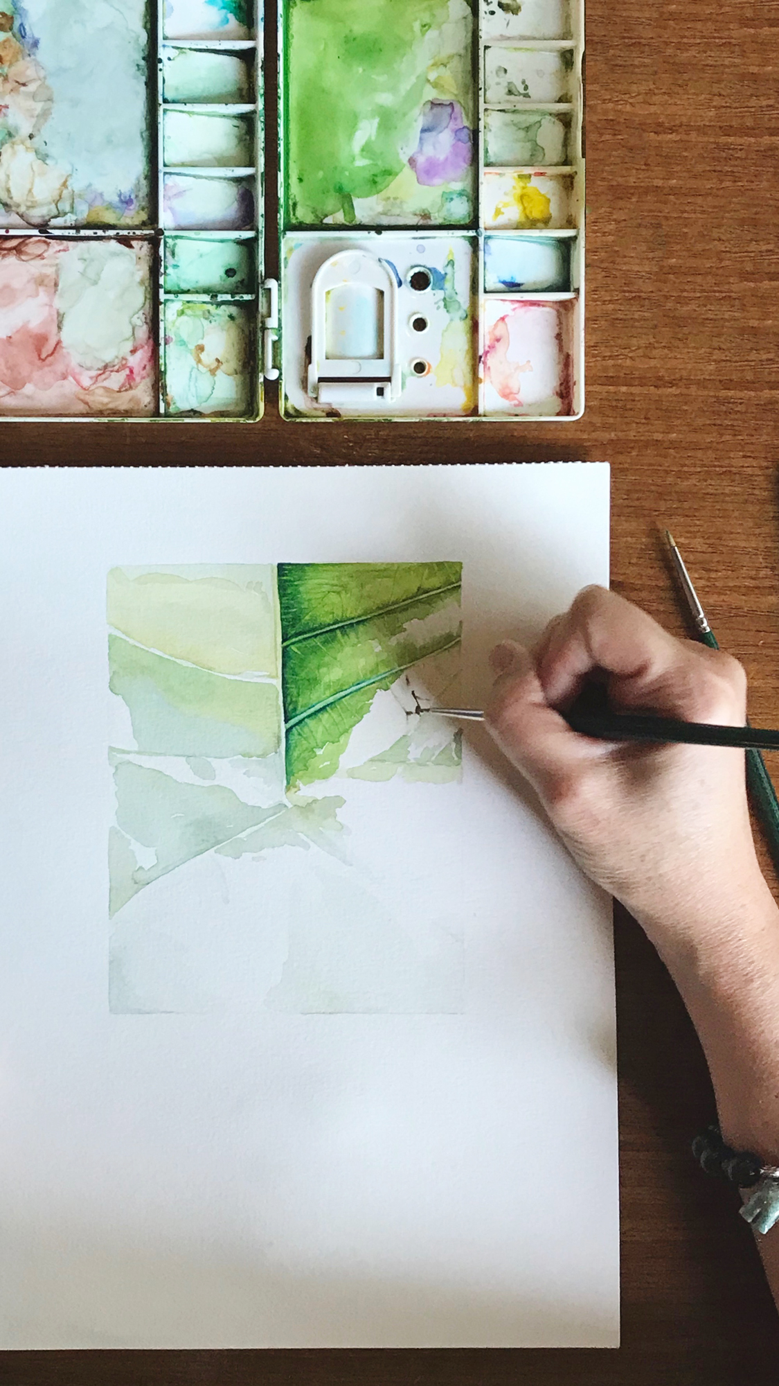 Botanical Drawings - Discover the wanderings and beauty of nature by drawing and painting them. We help to provide a deeper connection of botanicals and of drawings, watercolour techniques, brushworks, colour mixing, tonal values etc.Define and refine your aesthetics, and discover the artist in you.|