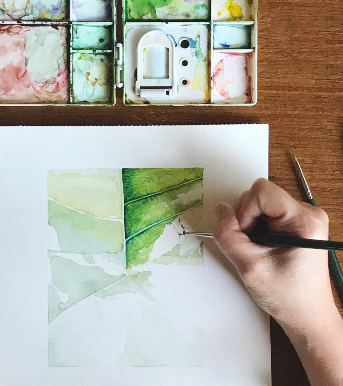 Botanical Watercolour - Discover the wanderings and beauty of nature by drawing and painting them. Our course help to provide a deeper connection and of botanicals and of drawing, watercolour techniques, brushworks, colour mixing, tonal values etc.Is about defining and refining your aesthetics and discover the artist in you. Our guests will discover and study a new flower or leaf with new eyes for nature and its beauty.Our classes are for adults and young art lovers with no prior training. And allowing our guests to practise their art on a progressive basis. The courses are designed for beginners and also art-nature enthusiasts. You will be taught how to observe, sketch and paint a variety of leaves and flowers.