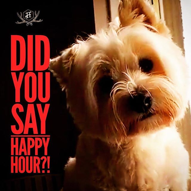 😃 Happy Friday! Happy hour 5-7pm with $5 Peroni 🍺, house wine 🍷 & bubbly 🥂 and basic spirits 🥃 PLUS $20 basic spirit jugs!