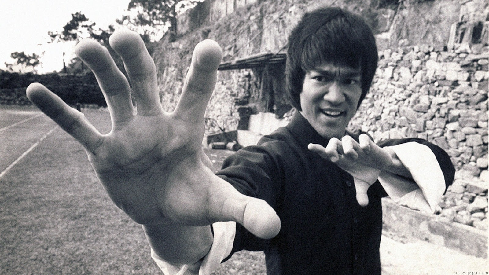Bruce lee Hd Wallpapers_2.jpg