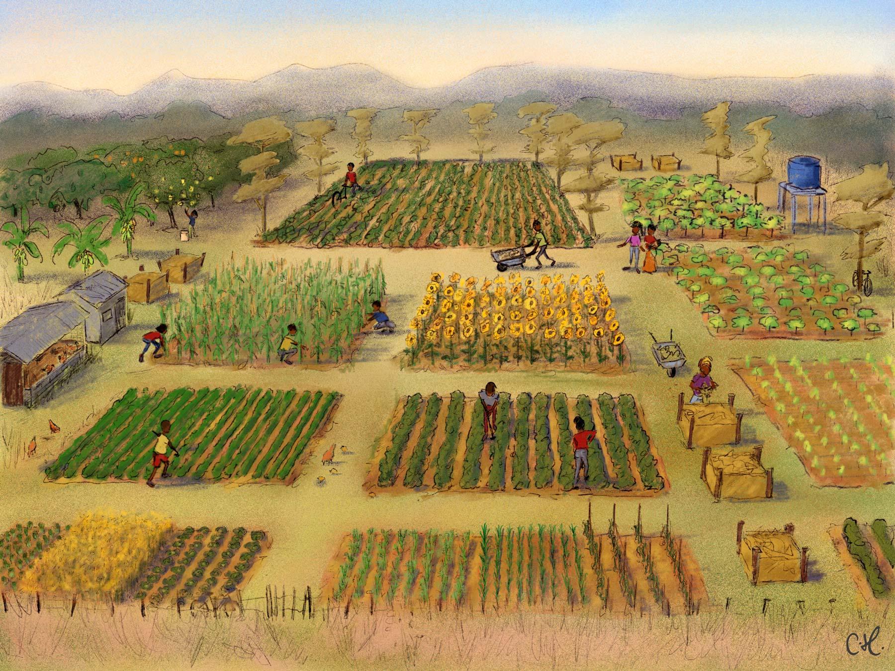 Farming_Scene.jpg