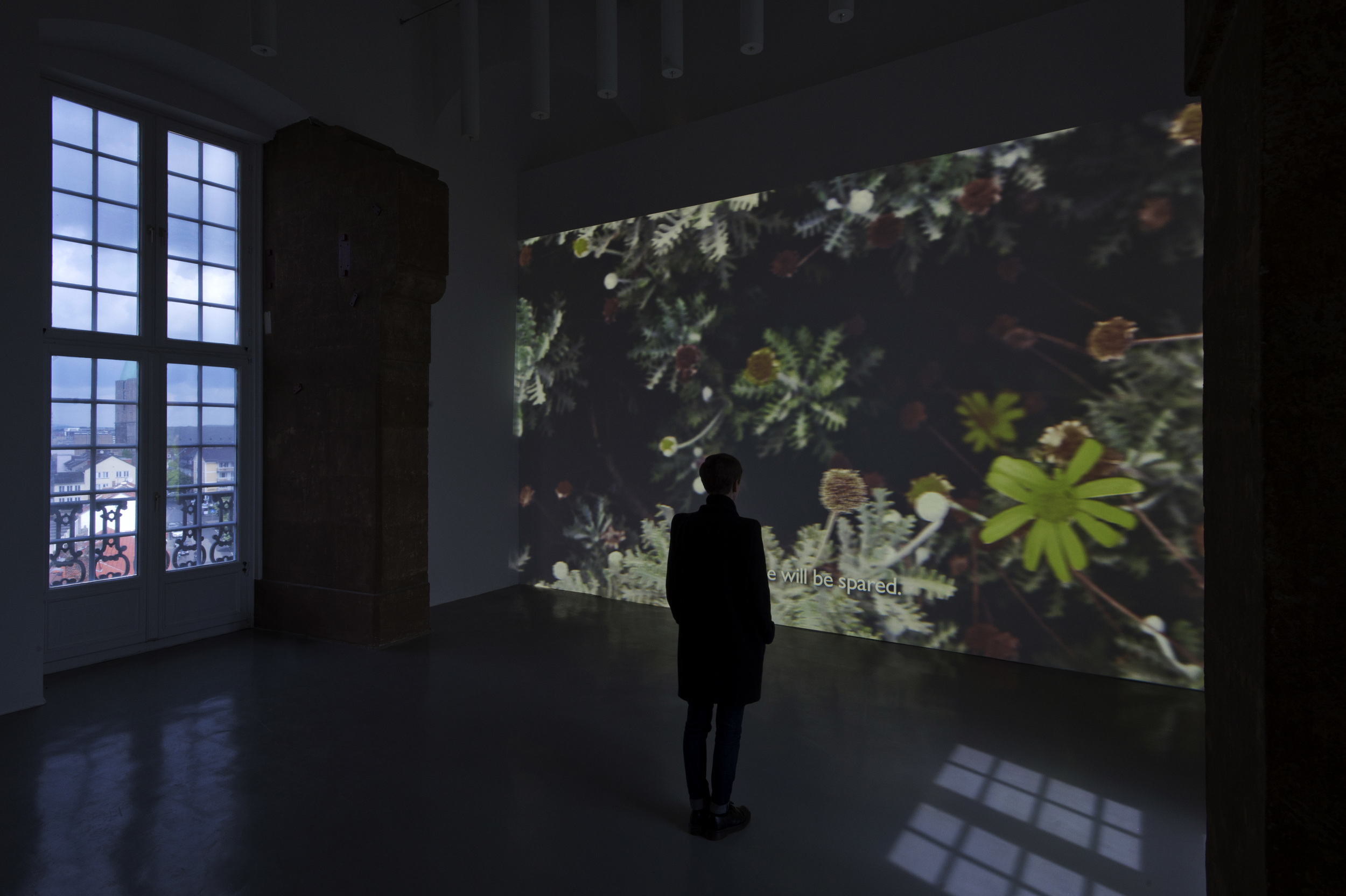 Shooting Stars Remind Me of Eavesdroppers, Installation shot from Night of Counting the Years, Fridericianum.© Nils Klinger
