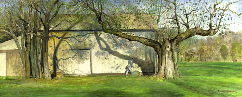 Barn_and_old_tree_sml.jpg