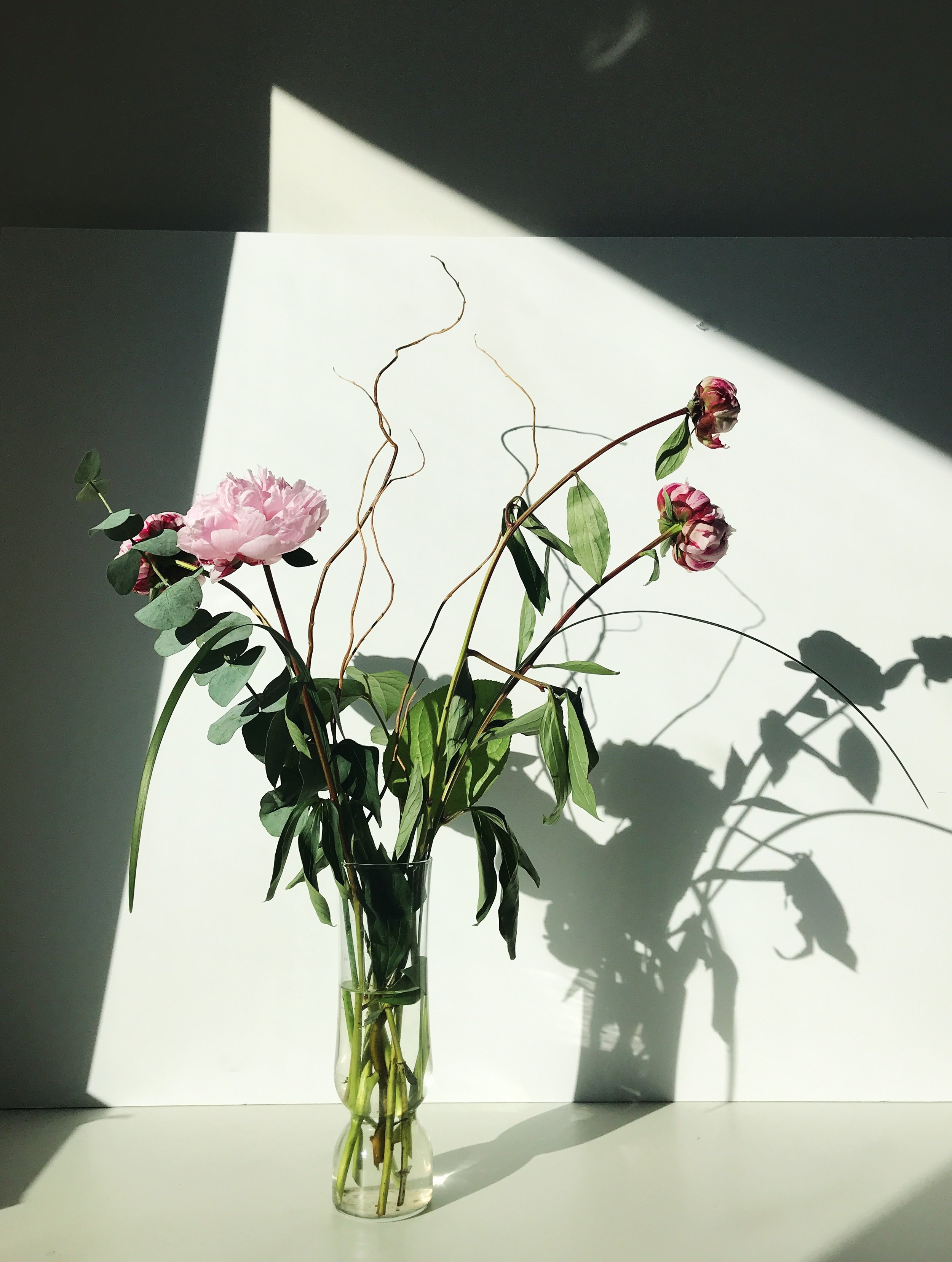 in my room in afternoon light