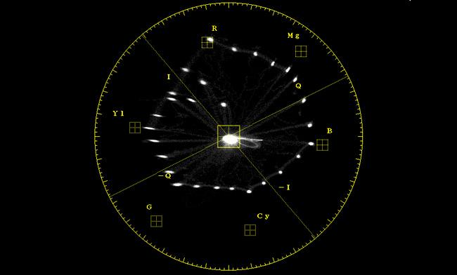 field_vector.jpg