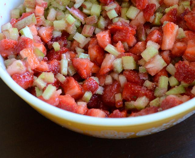 strawberry-rhubarb-galette-2