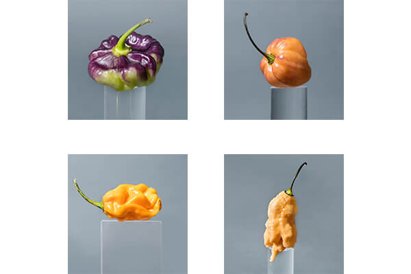 produce_of_the_future-5-peppers.jpg