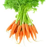 Carrotoil is best foranti-aging.