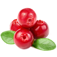 Cranberry seed is best for exfoliation