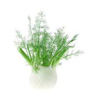 Fennel seed herbal extract is best for blemished skin and anti-aging.