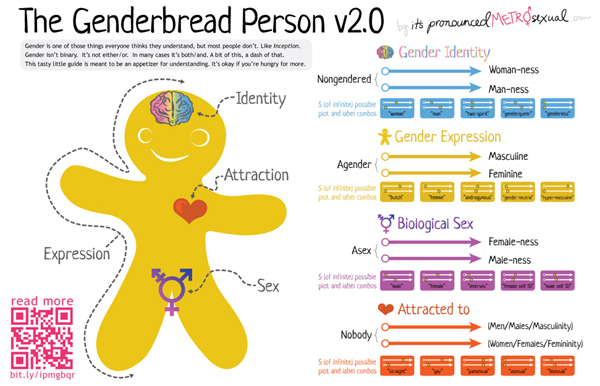 the-genderbread-person.jpg