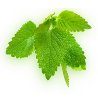 Lemon essential oil is good for all skin types.