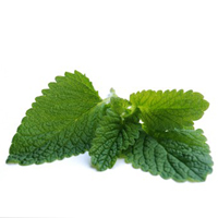 Peppermint essential oil is best for combination, oily, and blemished skin.