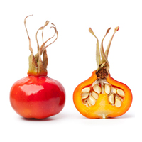 Rosehip seed oil is best for anti-aging.