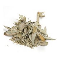 Sage herbal extract is best for blemished, combination, oily skin and anti-aging.
