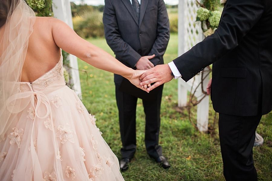 Michigan_Wedding_Photographer_Ann_Arbor_Arboretum_0076.jpg