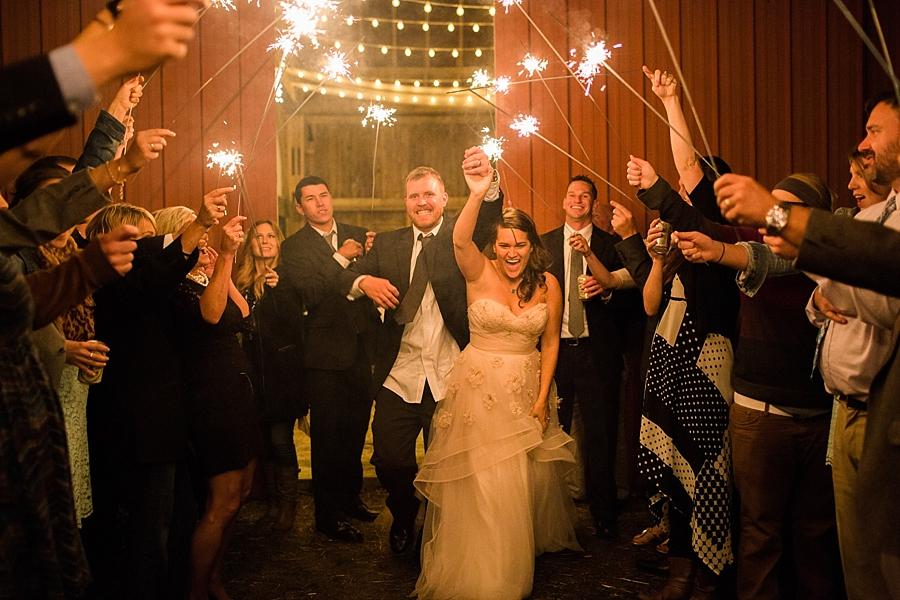 Michigan_Wedding_Photographer_Ann_Arbor_Arboretum_0097.jpg