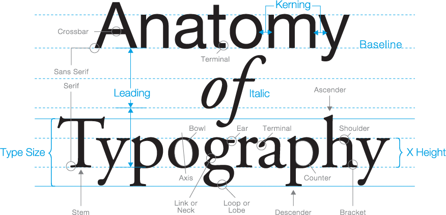 Anatomy-of-Typography.png