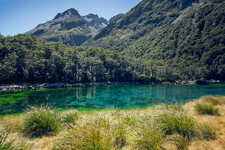 on-New-Zealand-s-South-Is-002.jpg