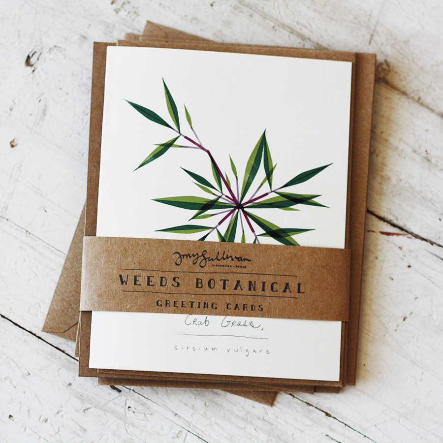 Modern Weeds and Wildflower Illustrations