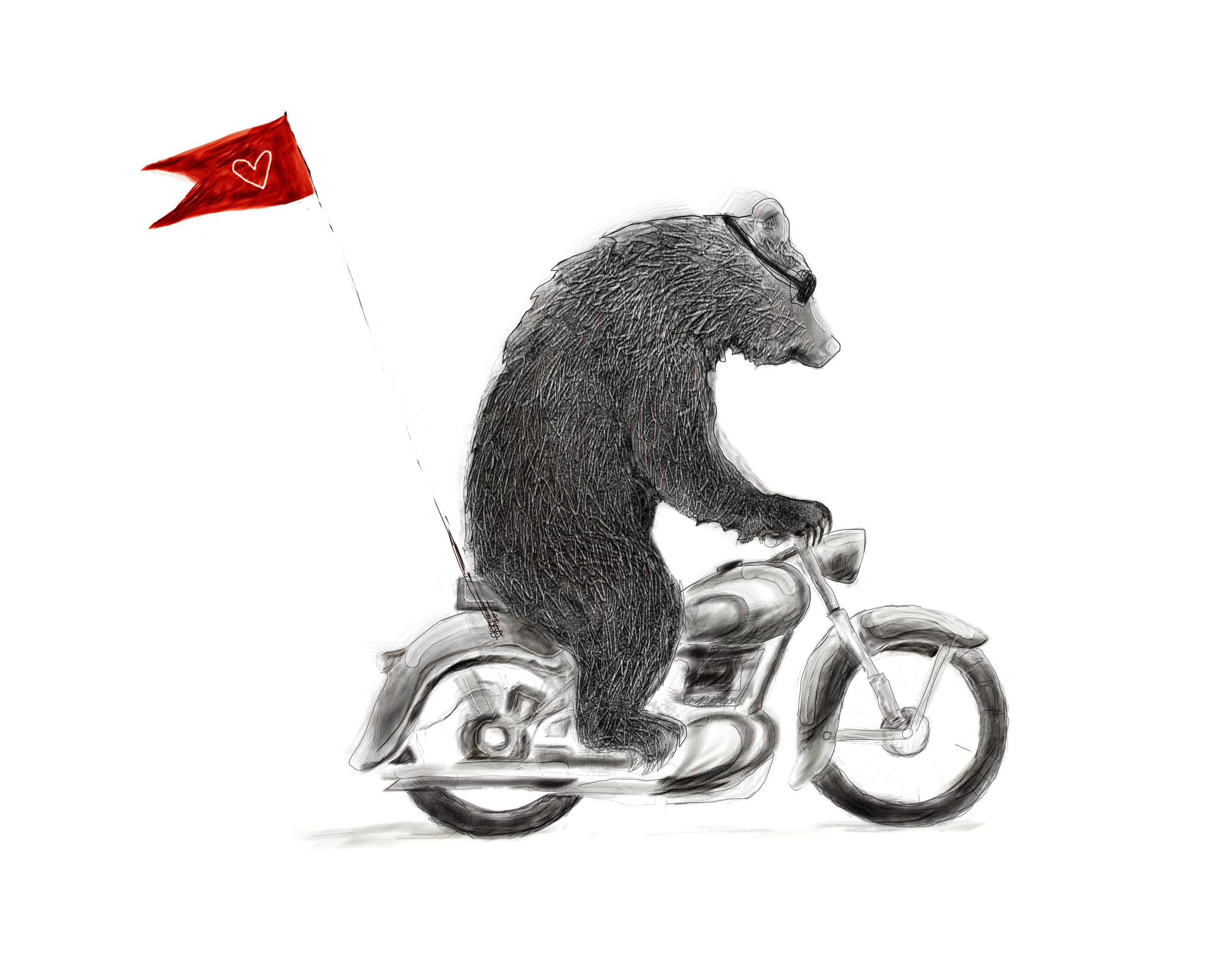 Motorcycle Bear Illustration
