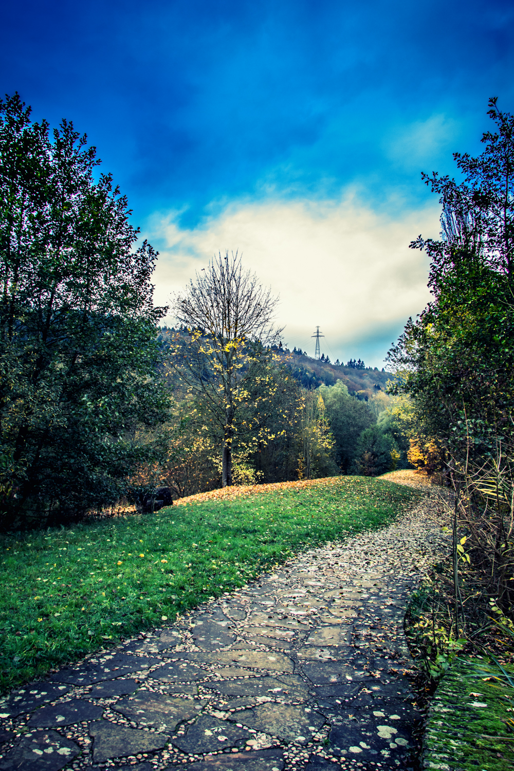 Footpath around the lake in Echternach