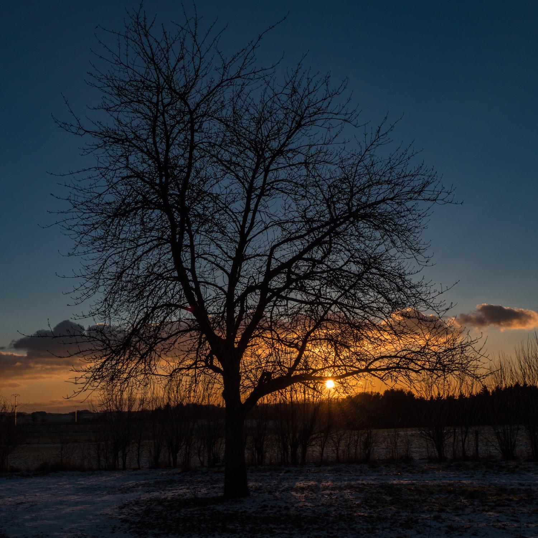 20170105  - Haller Sunset-49.jpg