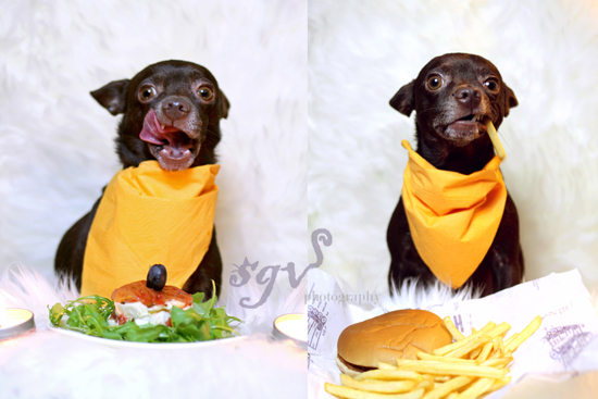 sgv_gastro-vs-fast-food_web.jpg