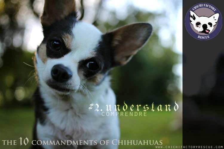 10_commandments_2B.jpg