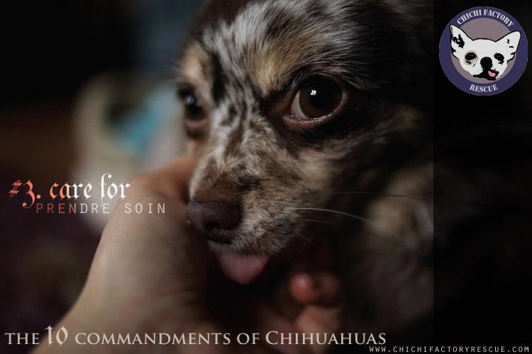 10_commandments_3.jpg
