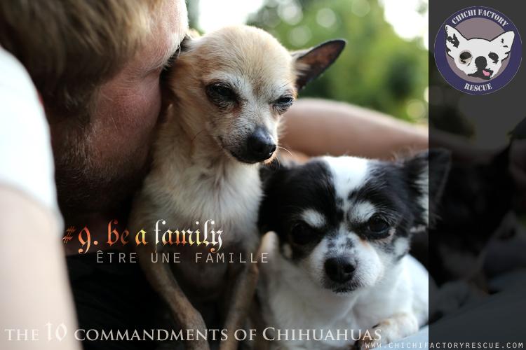 10_commandments_9.jpg