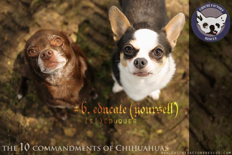 10_commandments_6b.jpg
