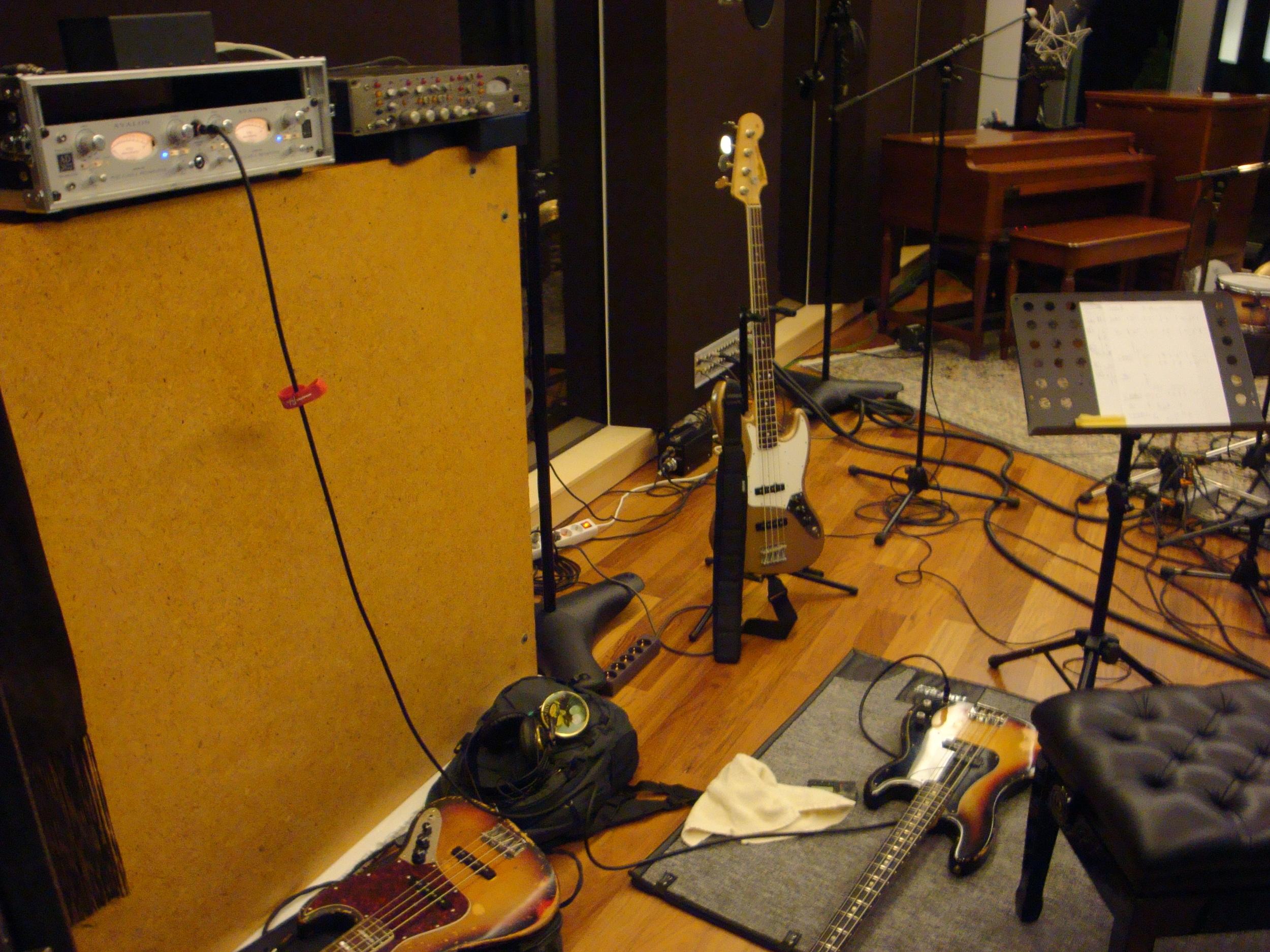 my beauties in the studio.JPG