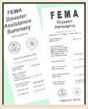 FEMA Materials 575w.jpg