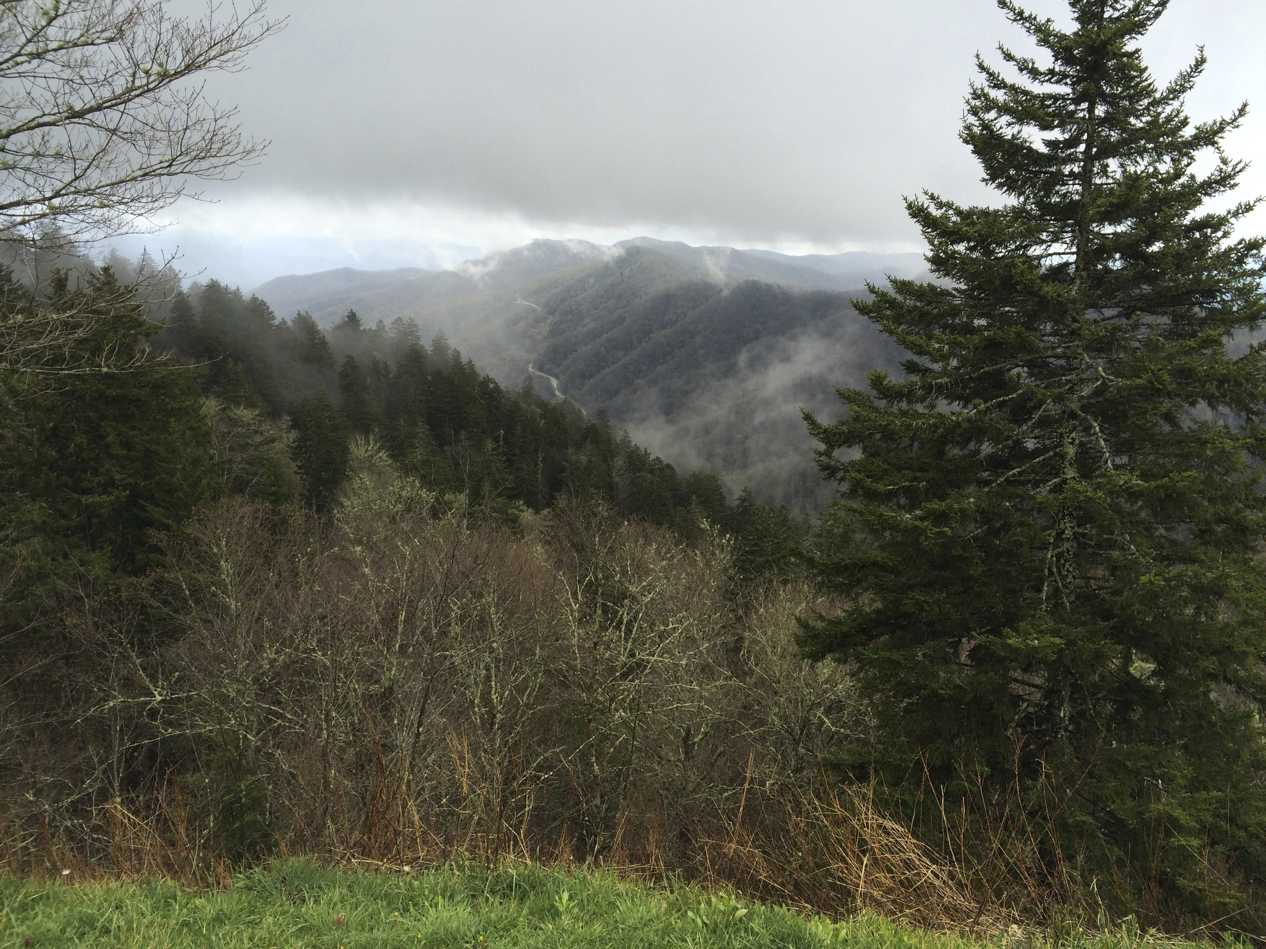 """""""They don't call 'em the Smoky Mountains for nothin.'"""""""
