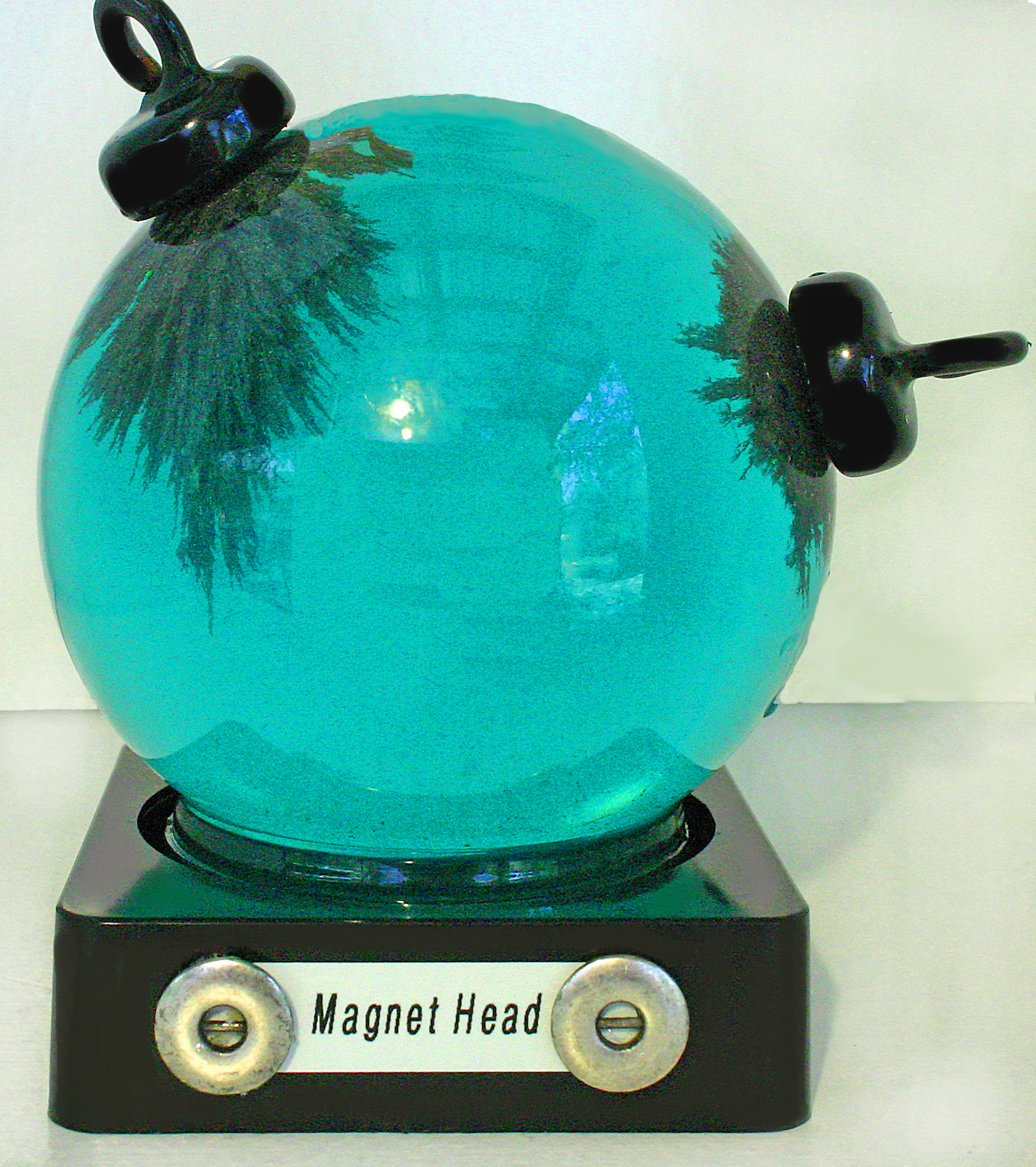 Magnet Head