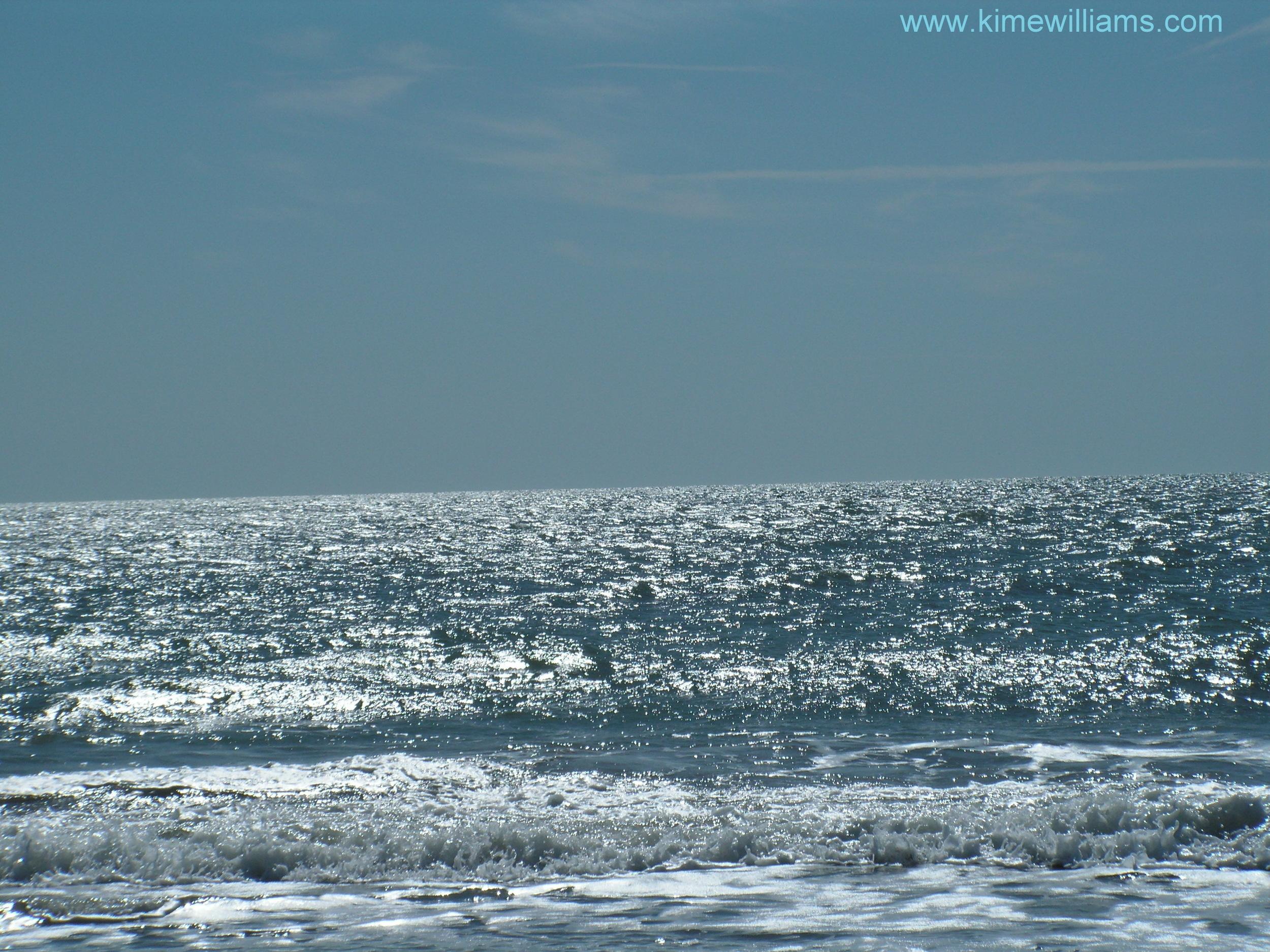 MB Ocean.jpg