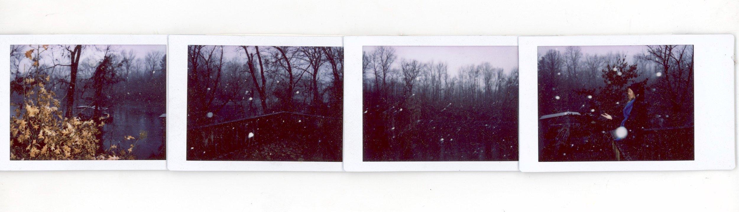 snow in arkansas II.jpeg