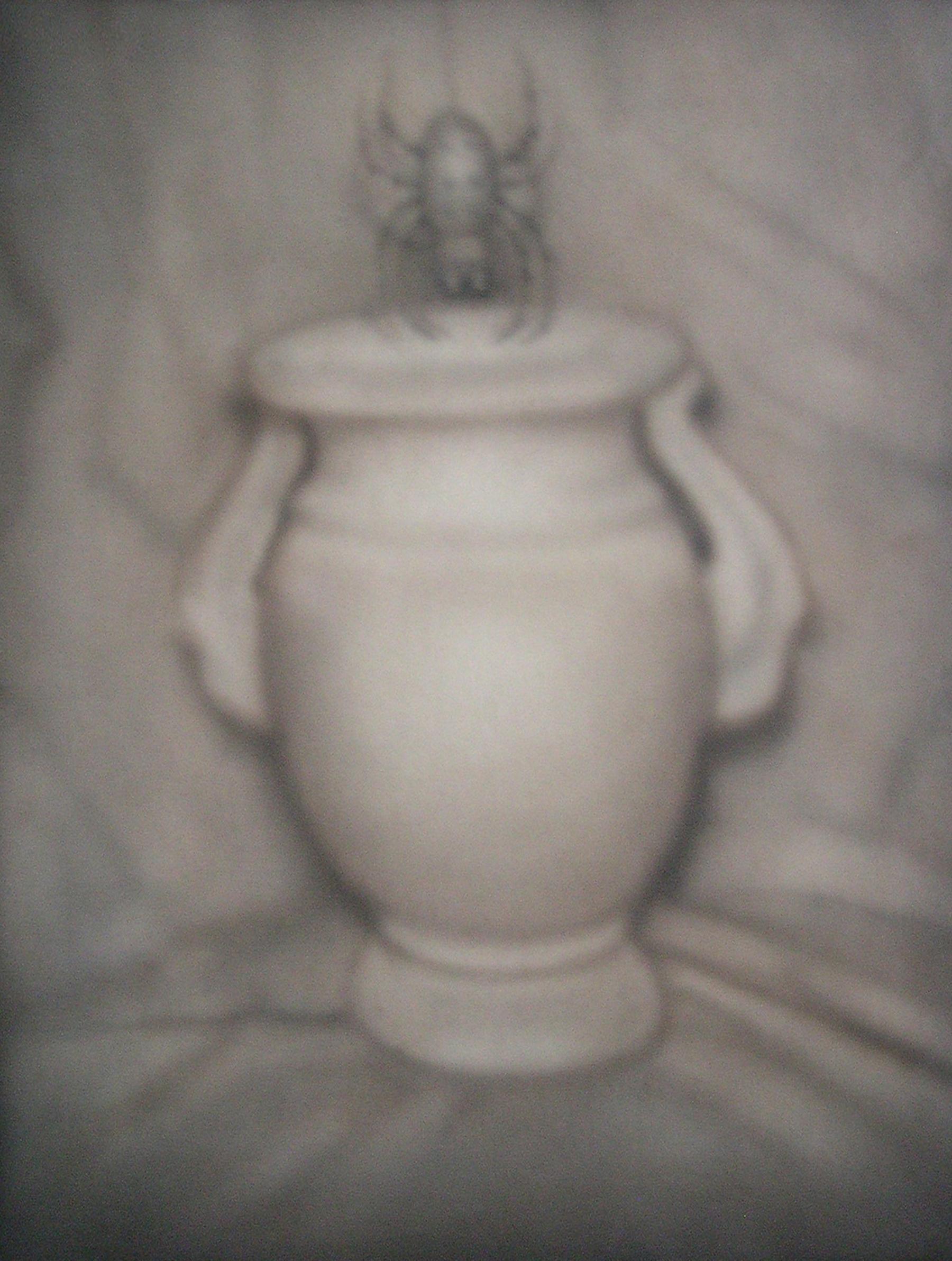 Spider Suspended over a Vase