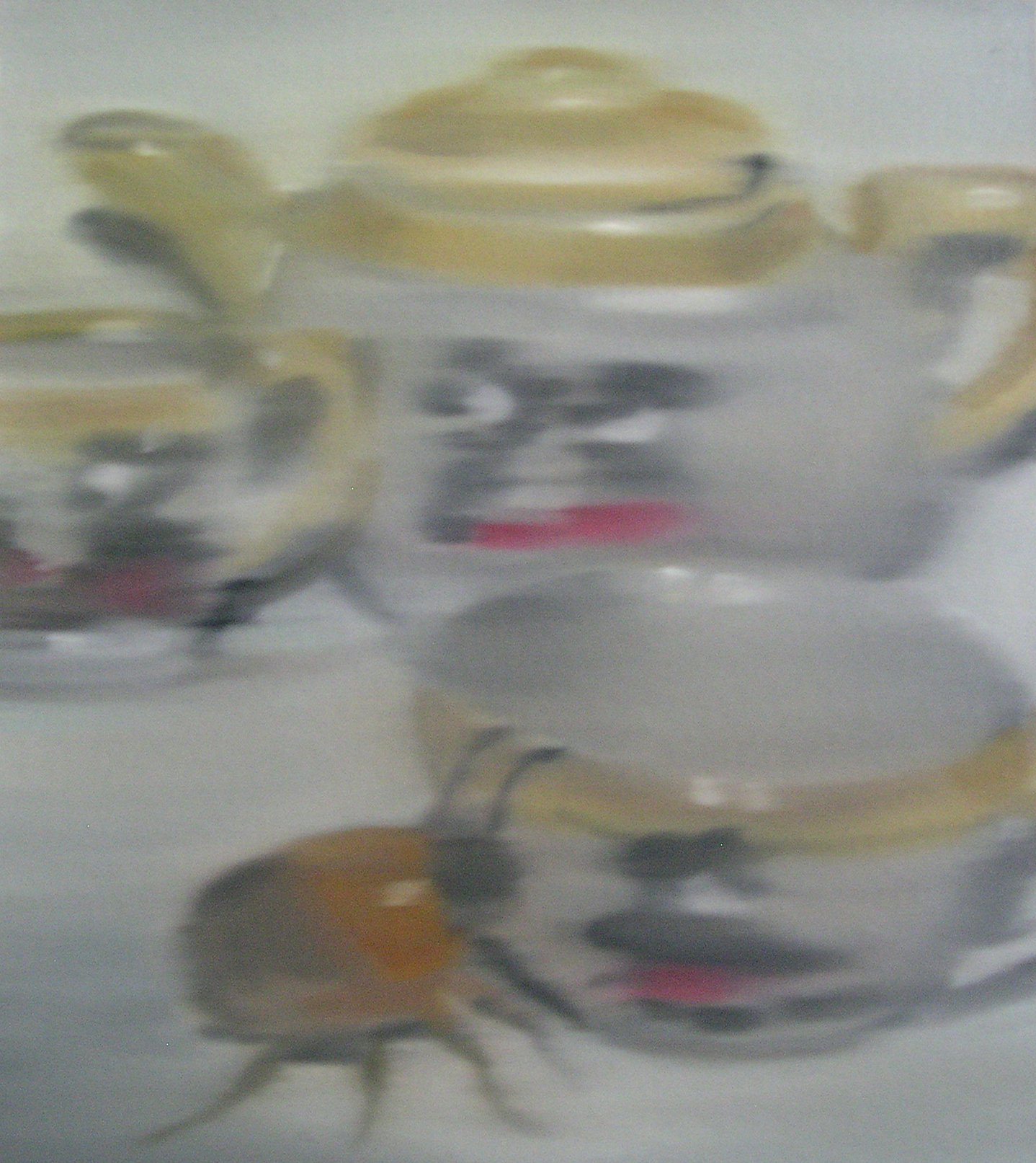 Beetle Intrigued by a Child's Teaset