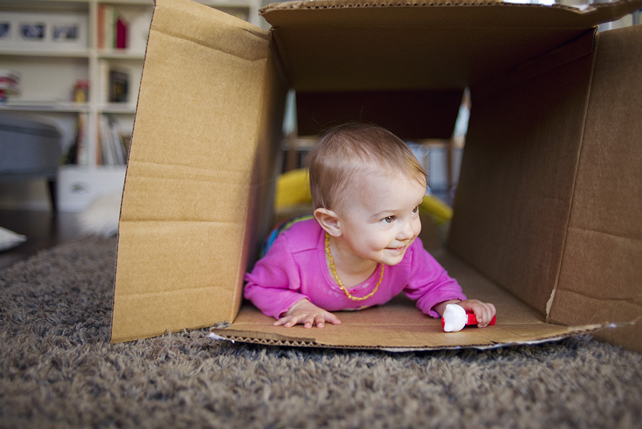 cardboard_6568.jpg